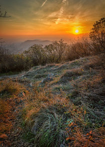 Sunset on the hill by Giordano Aita