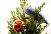 Wenn Teddys Weihnachtskugeln sehen... von Olga Sander