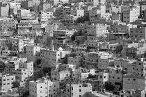 Amman von Norbert Probst
