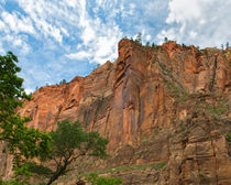 Those Incredible Zion Canyon Walls von John Bailey