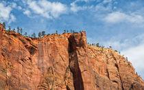 Magnificent Walls At Zion Canyon von John Bailey