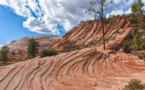 Rippled Rock At Zion National Park by John Bailey