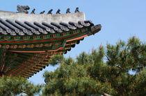 Seoul, Korea by Matthew D Foran