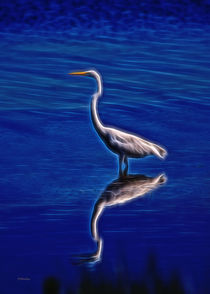 Spirit Of The Egret by John Bailey
