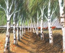 'BirkenRaum' von Hanna Aschenbach