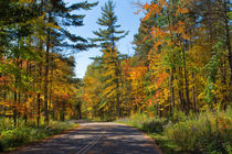 Drive Through Splendor in Minnesota by John Bailey