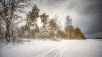 winterzeit II von Manfred Hartmann