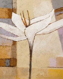 White Flower von Lutz Baar