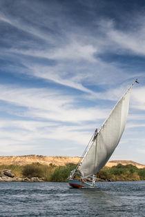 Crossing the Nile von David Tinsley
