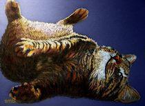 Scratch My Tummy von Susan Bergstrom