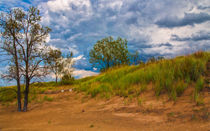 Sand Dunes At Indian Dunes National Lakeshore by John Bailey