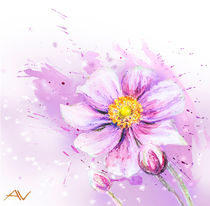 Japanese Anemones flower. Watercolor. by valenty