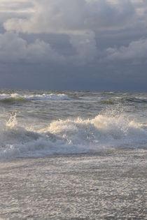 Wellen von Ute Bauduin