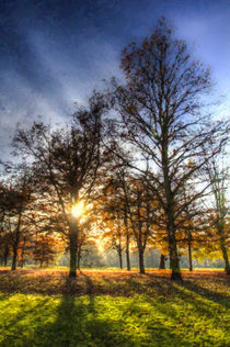 Greenwich Park Autumn Art by David Pyatt