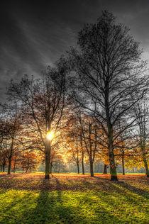 Greenwich Park London by David Pyatt