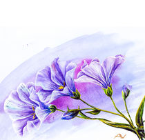 Wildflowers. Watercolor painting. by valenty