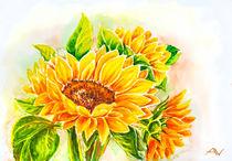 Sunflowers. Watercolor painting. von valenty