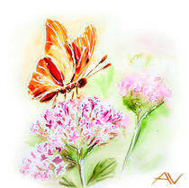 Painted watercolor card with summer flowers and butterfly by valenty