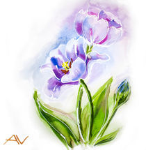 Purple tulips, watercolor painting. von valenty