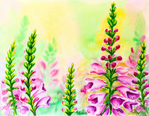 Foxglove flowers, oil painting on canvas by valenty