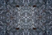 Ice Puddle by Lucja Lipinska