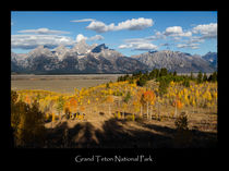 Grand Teton Poster von Kathleen Bishop