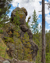 Waving Rock At Yellowstone by John Bailey