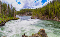 Free Flowing Yellowstone River by John Bailey