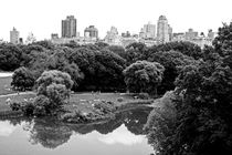 new york city ... central park relaxation von meleah