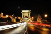 Chain Bridge, Budapest von Tania Lerro