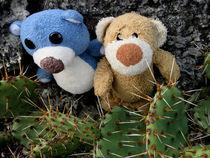 Teddybären und Stachelkakteen von Olga Sander