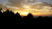 Sunset in the Trees at Nagarkot, Nepal von Sammriddha Shrestha