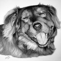 Comissioned Drawing-Griff von Tina Nelson