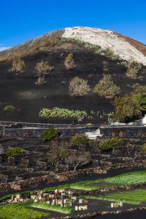 Vulkan von sven-fuchs-fotografie