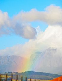 Rainbow Wineland by crismanart