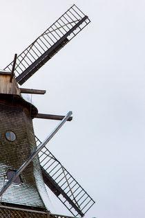 Windmill Potsdam by Daniele Ferrari