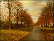 The Avenue. von Heather Goodwin