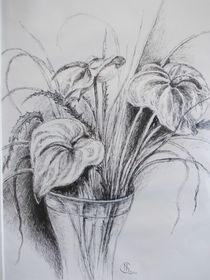 Vase mit Flamingoblüten von Dorothy Maurus