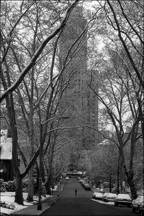 Cathedral of Learning from Lytton Avenue von Michael Whitaker