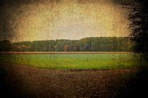 Felder und Wälder von leddermann