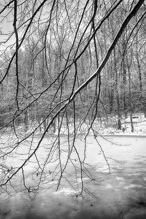 Winterruhe by Sybille Markgraf