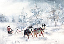 Huskies Sledge In Germany by Miki de Goodaboom