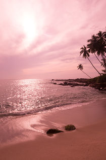 Tropical sunset landscape by Christina Rahm