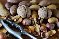 Nuts by Glen Mackenzie