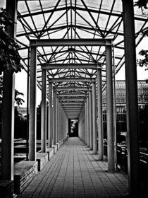 Steel Frame von Glen Mackenzie
