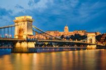 Buda Castle and Chain Bridge in Budapest by Michael Abid
