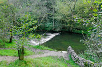 Weir Below Lover's Leap, Dovedale von Rod Johnson