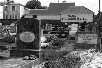 Saba Liquor N.V. by Michael Whitaker