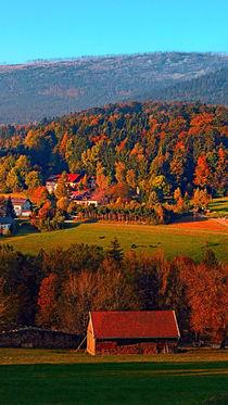 Prächtig buntes Herbstpanorama | Landschaftsfotografie von Patrick Jobst