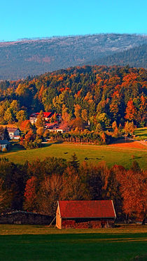 Prächtig buntes Herbstpanorama | Landschaftsfotografie by Patrick Jobst